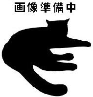 待ち猫01