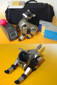 aibo immortal pet