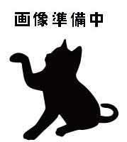 待ち猫09