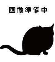 待ち猫11