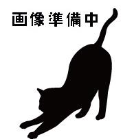 待ち猫13