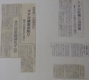shunkoumaru photo album (24)